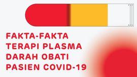 INFOGRAFIS: Fakta-fakta Terapi Plasma Darah Tangkal Covid-19