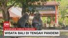 VIDEO: Wisata Bali di Tengah Pandemi
