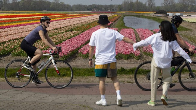 FILE - In this April 12, 2020, file photo, a couple stops walking to observe social distancing from passing cyclists on the main road in Lisse, Netherlands. As countries across the world seek to get their economies back on track after coronavirus lockdowns are over, some people are encouraging the use of bicycles as a way to avoid unsafe crowding on trains and buses. (AP Photo/Peter Dejong, File)