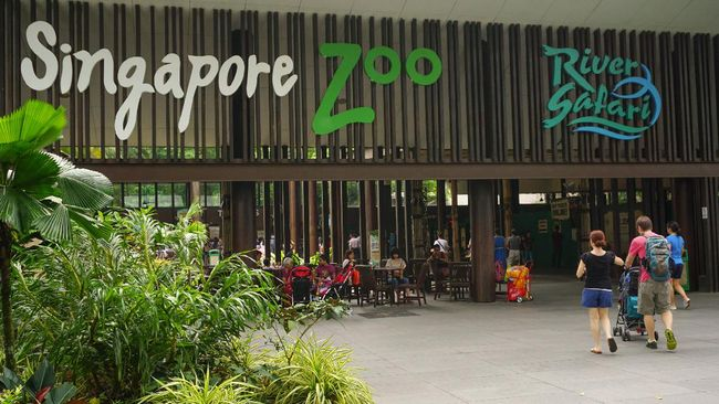 Singapore, Singapore - August 17, 2014: People going to entrance to Singapore Zoo. There are about 315 species of animal in the zoo. The Singapore zoo attracts about 1.6 million visitors each year.