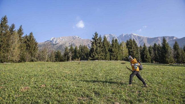 In this image taken on Thursday, April 23, 2020, alpine guide Ernesto Cocchetti, 57, walks on a slope in Castione Della Presolana, with Mt. Presolana in the background, near Bergamo, northern Italy. Cocchetti normally works the in summer, taking clients as young as 8 on hiking tours, and older clients up to the peaks of