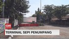 VIDEO: Terminal Sepi Penumpang