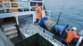 China Sesali RI Tangkap Kapal Ikan yang Diduga Aniaya ABK WNI