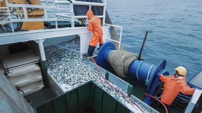 Vanuatu Tangkap 2 Kapal Nelayan China Diduga Mencuri Ikan