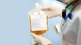 Rini dan Labirin Kesehatan Soal Plasma Darah