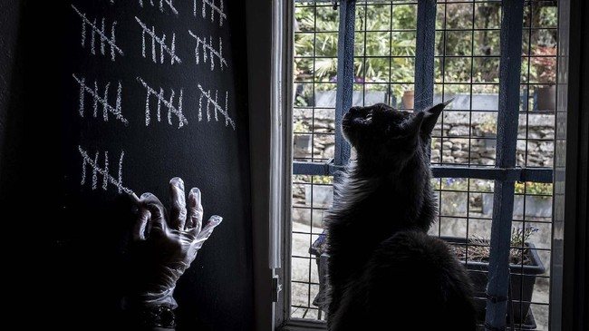 A person, watched by his cat, notes with chalk the days spent in confinement in his home, on May 5, 2020 in Givors near Lyon, on the 50th day of a strict lockdown in France to stop the spread of COVID-19, caused by the novel coronavirus. (Photo by JEAN-PHILIPPE KSIAZEK / AFP)
