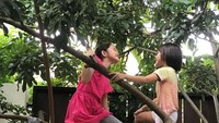 <p>Aduh, lain lagi dengan permainan anak perempuan di keluarga The Bramantyo. Kakak Kana dan Kala malah asyik manjat pohon. Awas jatuh ya! (Foto:Instagram @zaskiaadyamecca)</p>