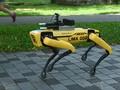 Robot Pengawas Warga Singapura yang 'Bandel' Kala Corona