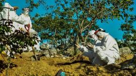 Angka Kematian Pasien Corona Indonesia Masih di Atas Global