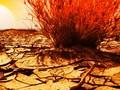 Kegigihan Nabi Ilyas Berdakwah dan Bencana untuk Bani Israil