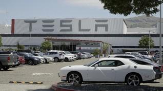 Donald Trump Bela Tesla yang Buka Pabrik Saat Lockdown