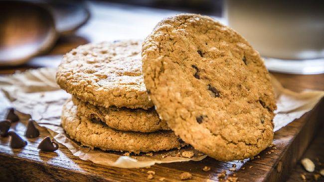 Ilustrasi oatmeal cookies