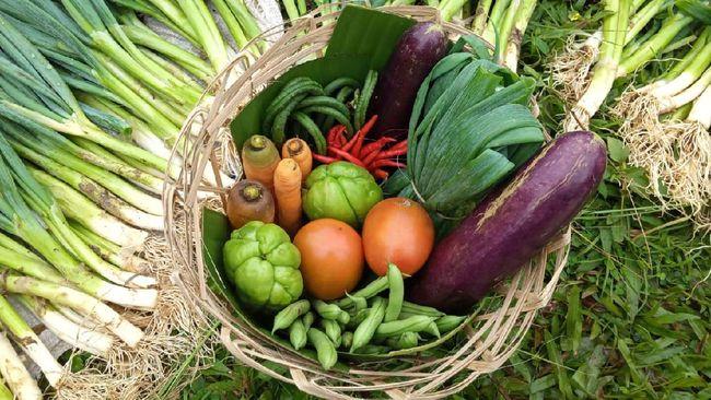 Hari Pangan Sedunia mengingatkan orang akan pentingnya mengonsumsi pangan lokal. Ada beberapa cara yang bisa dilakukan untuk meningkatkan konsumsi pangan lokal.