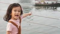 <p>Sal sering dibilang lebih mirip Rio Dewanto. Tapi, ada juga beberapa netizen yang mengatakan bahwa Sal lebih mirip ibunya. Kalau menurut Bunda bagaimana? (Foto: Instagram @atiqahhasiholan)</p>