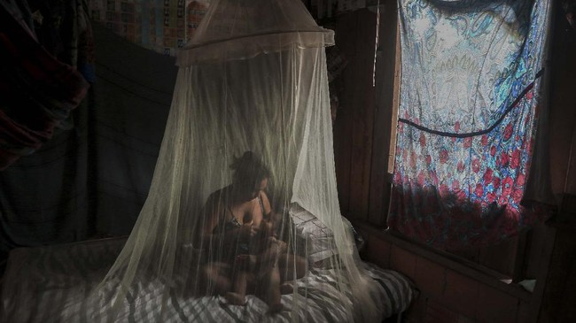 Satere-Mawe indigenous mother Priscila Tavares Batista, 36 breastfeeds her son Jone Tavares, 2, in a bed protected by a mosquito net, after being treated with medicinal herbs after showing symptoms of COVID-19, in the Wakiru community, in Taruma neighbourhood, a rural area west of Manaus, Amazonas State, Brazil, on May 17, 2020, during the novel coronavirus pandemic. - According to Satere-Mawe indigenous leader Andre Satere, eleven people in their community are showing COVID-19 symptoms. The local and state governments were called to assist to no avail. With the Amazonas state health system saturated, indigenous people turn to their ancestral knowledge about the region's nature to stay healthy and treat possible symptoms of the novel coronavirus. (Photo by Ricardo OLIVEIRA / AFP)