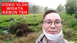 VIDEO: Vlog Kebun Teh Jadi Tujuan Wisata di Kawasan Puncak
