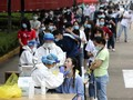 Saran Ahli Agar RI Bisa Gelar Tes Massal Cepat Seperti China