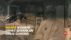 VIDEO: Hoaks Nyamuk Sebarkan Virus Corona