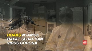 VIDEO: Hoaks Nyamuk Sebarkan Virus Corona