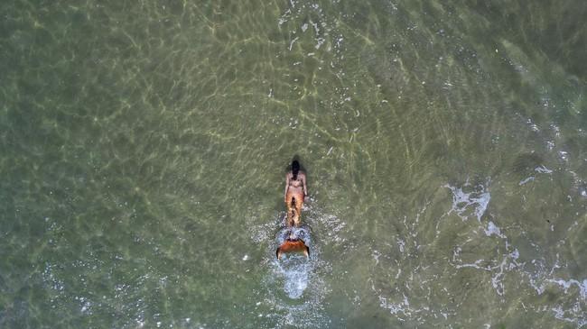 A member of the Israeli Mermaids Community swim with a mermaid tail at the beachfront in Bat Yam, near Tel Aviv, Israel, Saturday, May 23, 2020. Members of the Israeli mermaid community gathered at the beachfront to mark the beginning of the bathing season. (AP Photo/Oded Balilty)