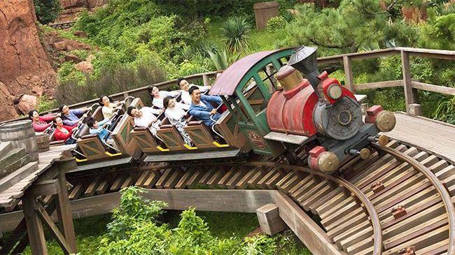 roller coaster disneyland tokyo