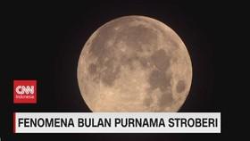 VIDEO: Fenomena Bulan Purnama Stroberi