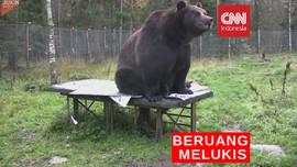 VIDEO: Aksi Beruang Raksasa Melukis