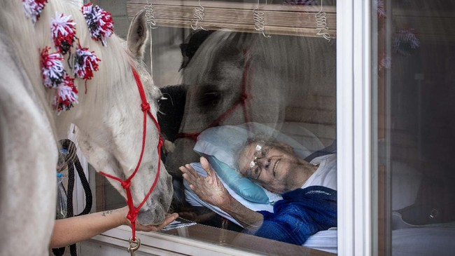 "In this  Wednesday, May 27, 2020 photo, Having grown up with horses in Glenwood, Iowa, Edwin Johnson was happy to see Jewel, 30-something Arabian horse who made a visit to his window with owner Sheila Carroll of Lincoln at Holmes Lake Rehabilitation & Care Center in Lincoln, Neb.  They call it ""window wellness,"" a visit to residents of assisted-living facilities who can't have visitors in the buildings because of COVID-19 precautions.(Francis Gardler/Lincoln Journal Star via AP)"