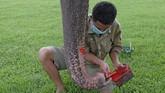 Pawang gajah Andi Kurniawan (29) mempersiapkan alat lukis untuk gajah peliharaan Taman Wisata Candi (TWC) Borobudur Zella.