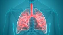 Infeksi Pneumonia, Kadis Pendudukan Surabaya Meninggal Dunia