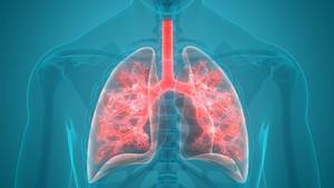 Infeksi Pneumonia, Kadis Pemkot Surabaya Meninggal Dunia