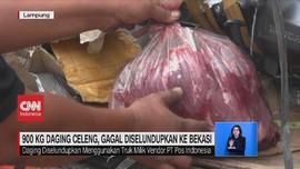 VIDEO: 900 Kg Daging Celeng Gagal Diselundupkan ke Bekasi