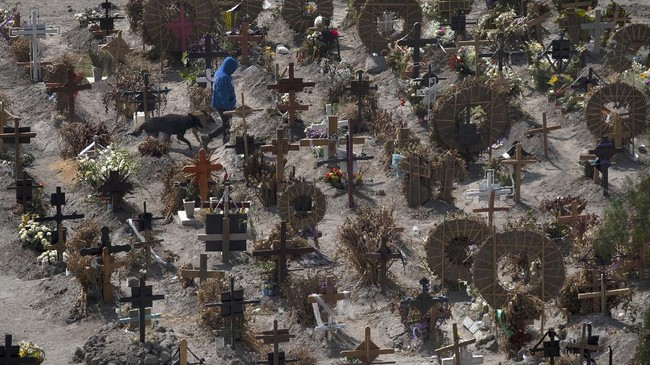 Cemetery foreman Juan Rivera walks with his dogs in the Municipal Cemetery of Valle de Chalco amid the coronavirus pandemic on the outskirts of Mexico City, Monday, June 15, 2020. (AP Photo/Marco Ugarte)