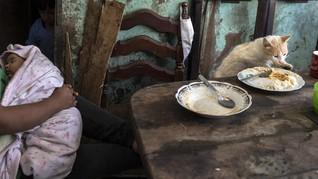 Kematian akibat Kelaparan Lebih Tinggi dari Infeksi Corona