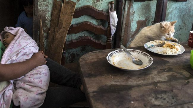 Consuelo Pascacio cradles her baby Anyelina as the family pet Demon helps himself to leftovers, in the Nueva Esperanza neighborhood of Lima, Peru, Monday, June 8, 2020. Pascacio's baby was born on March 31 but she has not been able to register her because the public records office is closed due to the government lockdown to curb the spread of the new coronavirus. (AP Photo/Rodrigo Abd)