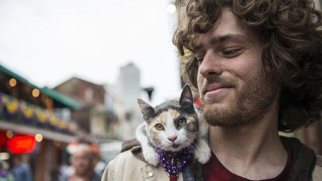 pria gendong kucing