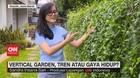 VIDEO: Berkebun di Rumah dengan Vertical Garden