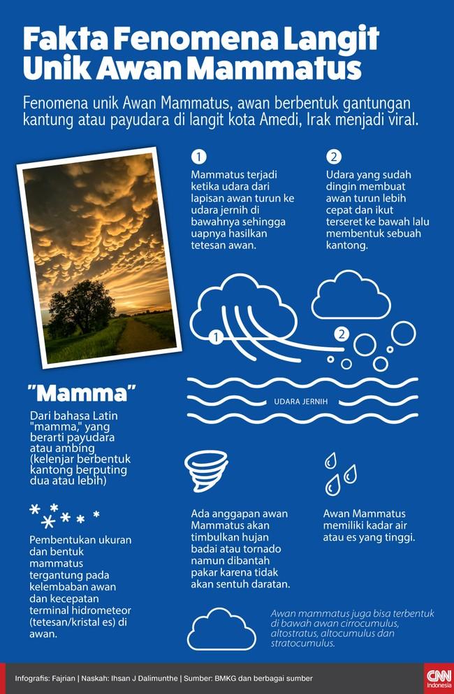 Infografis Fenomena Langit Unik Awan Mammatus