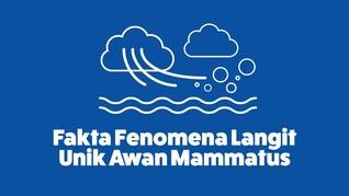 INFOGRAFIS: Fakta Fenomena Langit Unik Awan Mammatus