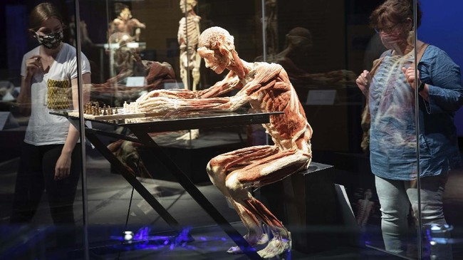 A woman and her daughter look at the plastinate