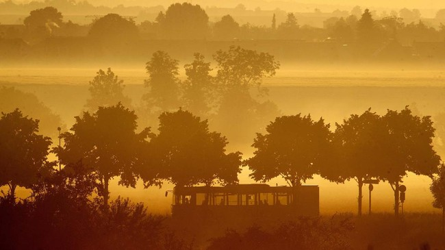 A bus drives on a road in the outskirts of Frankfurt, Germany, after sunrise on Friday, June 19, 2020. (AP Photo/Michael Probst)
