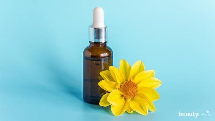 Sering Ditemukan dalam Ingredients Skincare, Berikut Manfaat dari Jojoba Oil