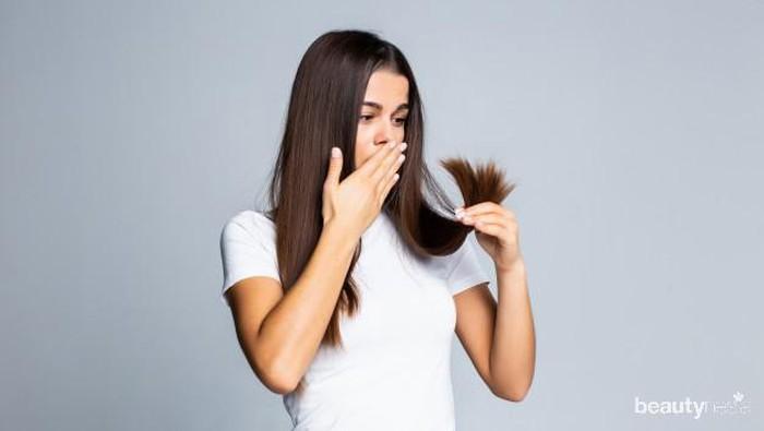 Yuk Kenali Tipe Kerusakan Pada Rambut dan Cara Mengatasinya!