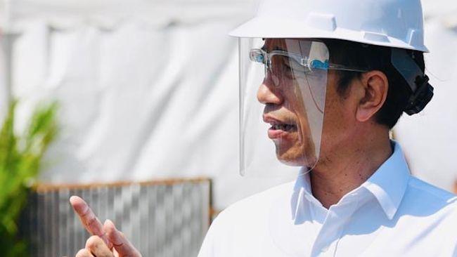 Ekonom menilai pembubaran 16 lembaga ekonomi oleh Jokowi berpotensi menjadi bumerang karena pengalihan tugas bisa memakan waktu.
