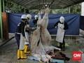 Kawal Protokol, Pemotongan Kurban di DKI Diawasi Polisi