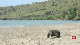 VIDEO: Dua Pulau di TN Komodo Jadi Lokasi Wisata Eksklusif