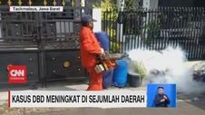 VIDEO: Kasus DBD Meningkat di Sejumlah Daerah