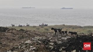 DKI Klaim Museum Nabi Tak Dibangun di Pulau Reklamasi