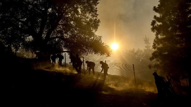 Firefighters battle the Crews Fire along Canada Road near Gilroy, Calif., Sunday, July 5, 2020. (AP Photo/Noah Berger)