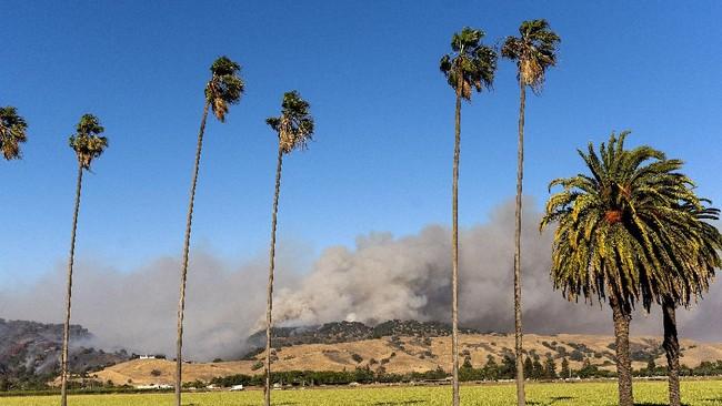 The Crews Fire burns near Gilroy, Calif.,  Sunday, July 5, 2020. (AP Photo/Noah Berger)
